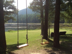 "The magical swings at the Walking Lightly Ranch  they whisper""Come & play!"""